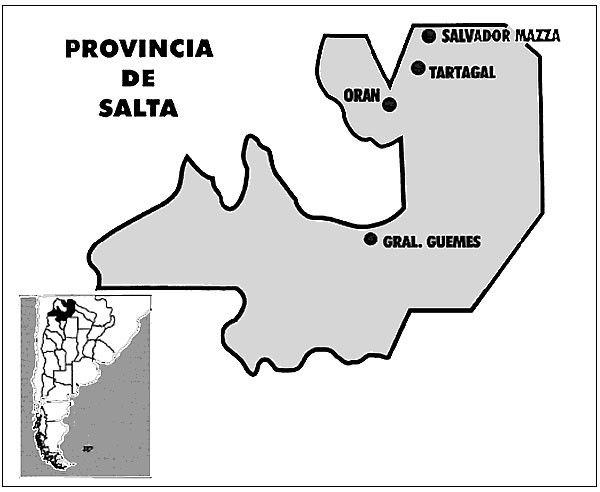 Surveillance for dengue virus infections in Salta Province: Localities with cases.