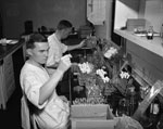 Thumbnail of Dr. P.R. Edwards of the US Public Health Service seated in the background, and George Herman working in the Enteric Bacteriology Unit Laboratory. Dr. Edwards joined the staff of the Communicable Disease Center of the Public Health Service in 1948 and served as Chief of the Enteric Bacteriology Unit until June 1962, when he accepted the post of Chief of the Bacteriology Section at CDC. Image source: Public Health Image Library.
