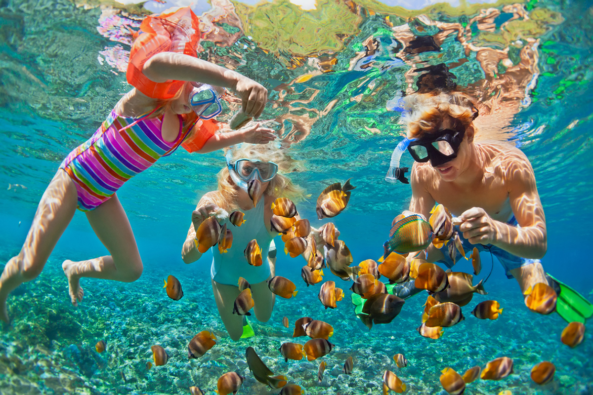 Children snorkeling with fish