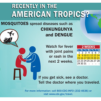 Infographic: Recently in the American Tropics?
