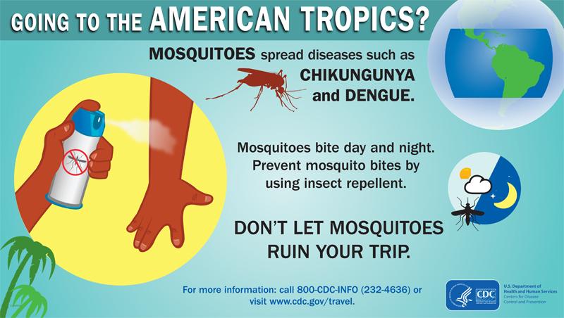 infographics prevent bug bites travelers health cdc