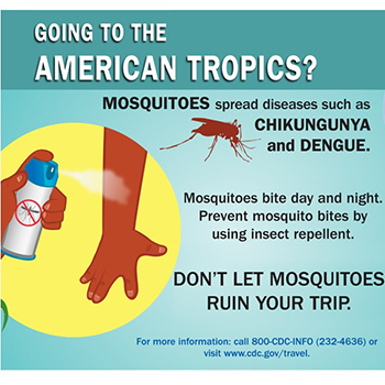 Infographic: Going to the American Tropics?