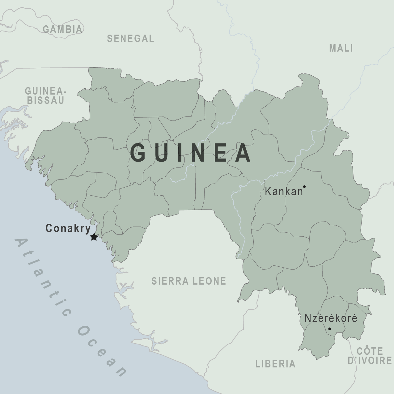 Image result for guinea