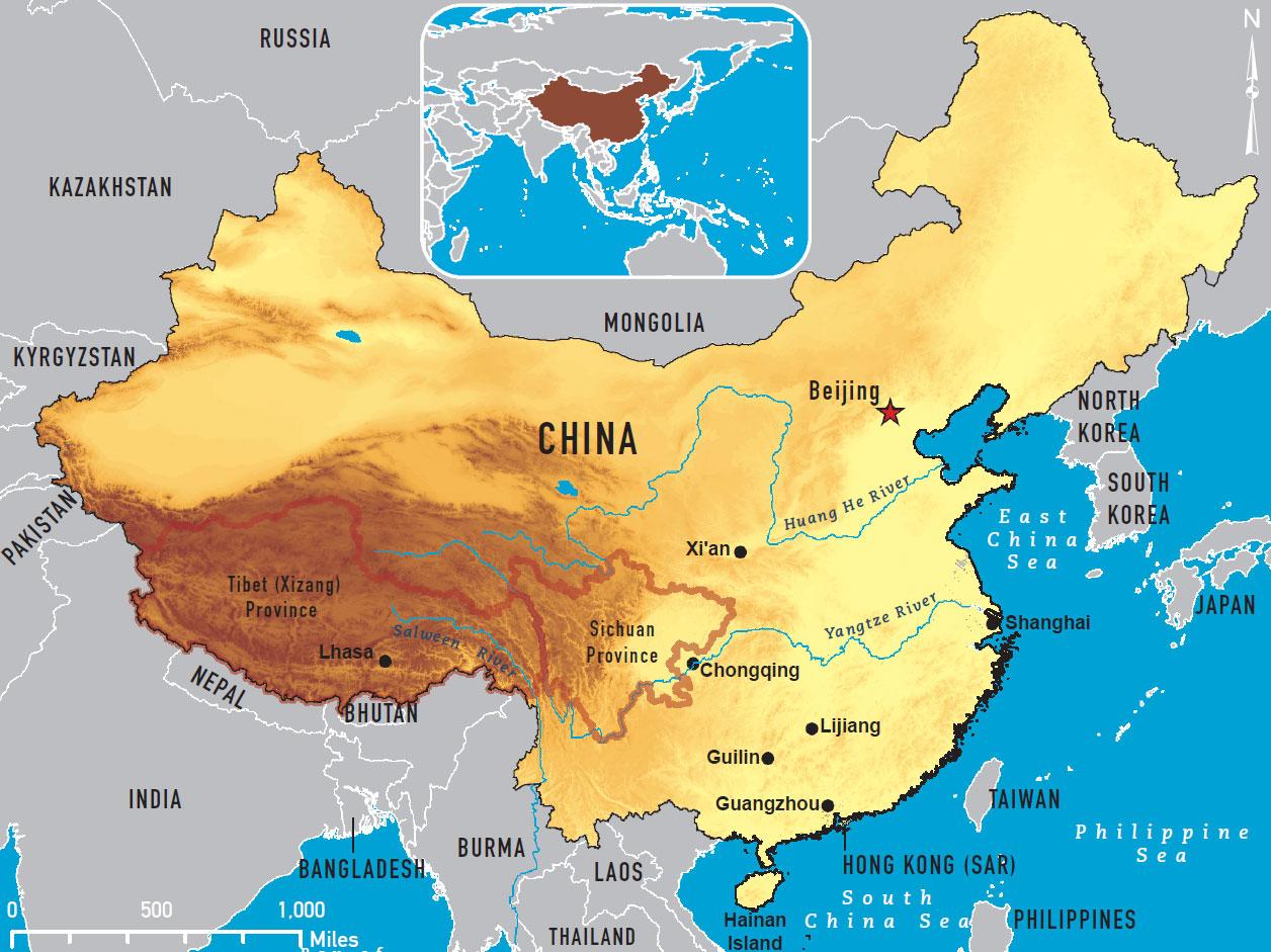 Primary Urbanization in Ancient China Essay Sample